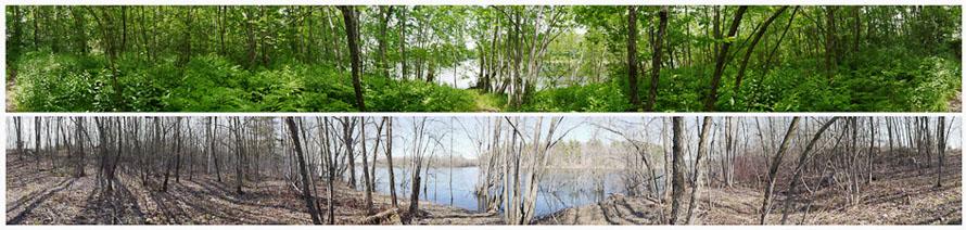 Path to River, Durham River Park June and April (dual 360 degree views), 2010