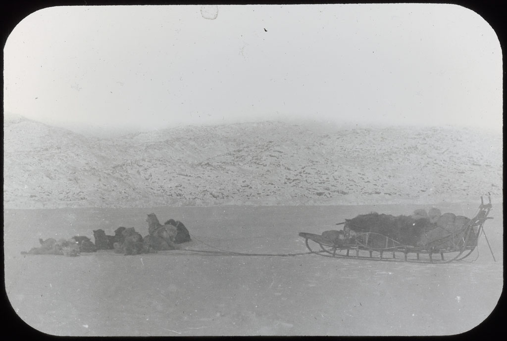 Donald Baxter MacMillan; Dog team 1914/Crockerland Expedition; 1914; image; silver gelatin on glass; 10.16 cm x 8.26 cm x 0.64 cm (4 in. x 3 1/4 in. x 1/4 in.); TGM; North America