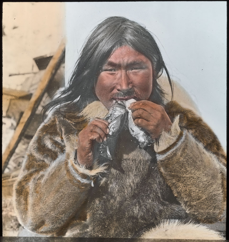 Donald Baxter MacMillan; Eskimo eating 2 Dovekies; 1913-1917; image; silver gelatin on glass; 10.16 cm x 8.26 cm x 0.64 cm (4 in. x 3 1/4 in. x 1/4 in.); TGM; North AmericaDonald Baxter MacMillan; Eskimo eating 2 Dovekies; 1913-1917; image; silver gelatin on glass; 10.16 cm x 8.26 cm x 0.64 cm (4 in. x 3 1/4 in. x 1/4 in.); TGM; North America
