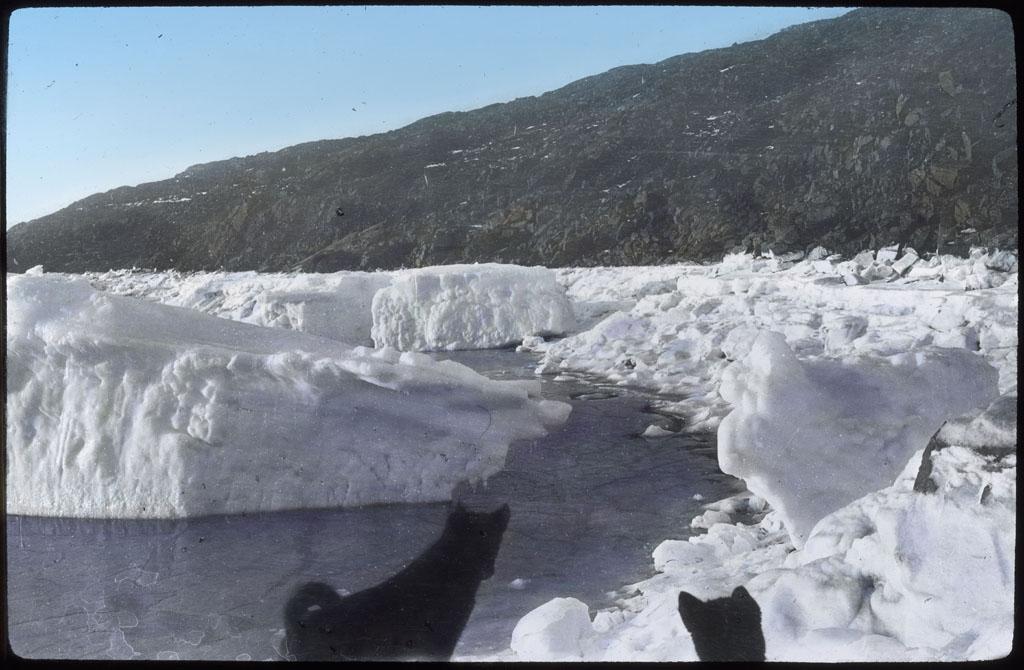 Icefoot Off Etah