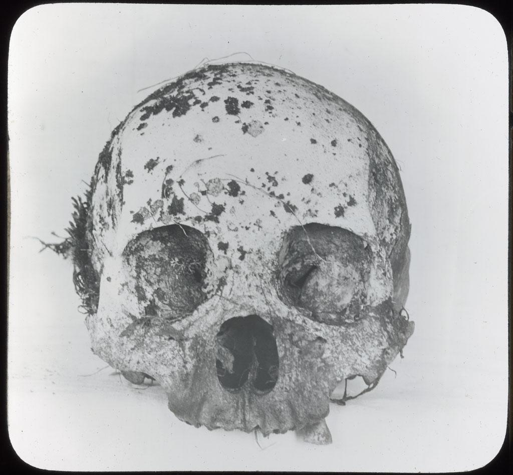 Donald Baxter MacMillan; Eskimo Skull, Northwest Greenland; 1913-1917; image; silver gelatin on glass; 10.16 cm x 8.26 cm x 0.64 cm (4 in. x 3 1/4 in. x 1/4 in.); TGM; North America