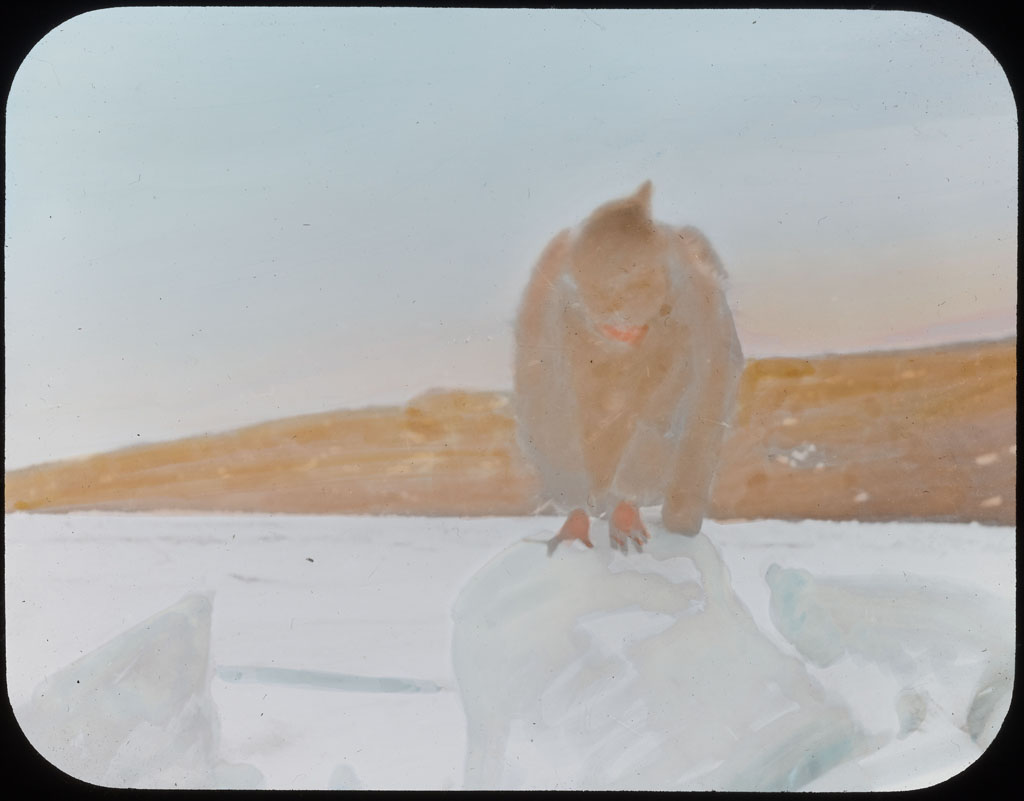 Donald Baxter MacMillan; In-ah-loo Having Piblockto at Etah; 1913-1917; image; silver gelatin on glass; 10.16 cm x 8.26 cm x 0.64 cm (4 in. x 3 1/4 in. x 1/4 in.); TGM; North America