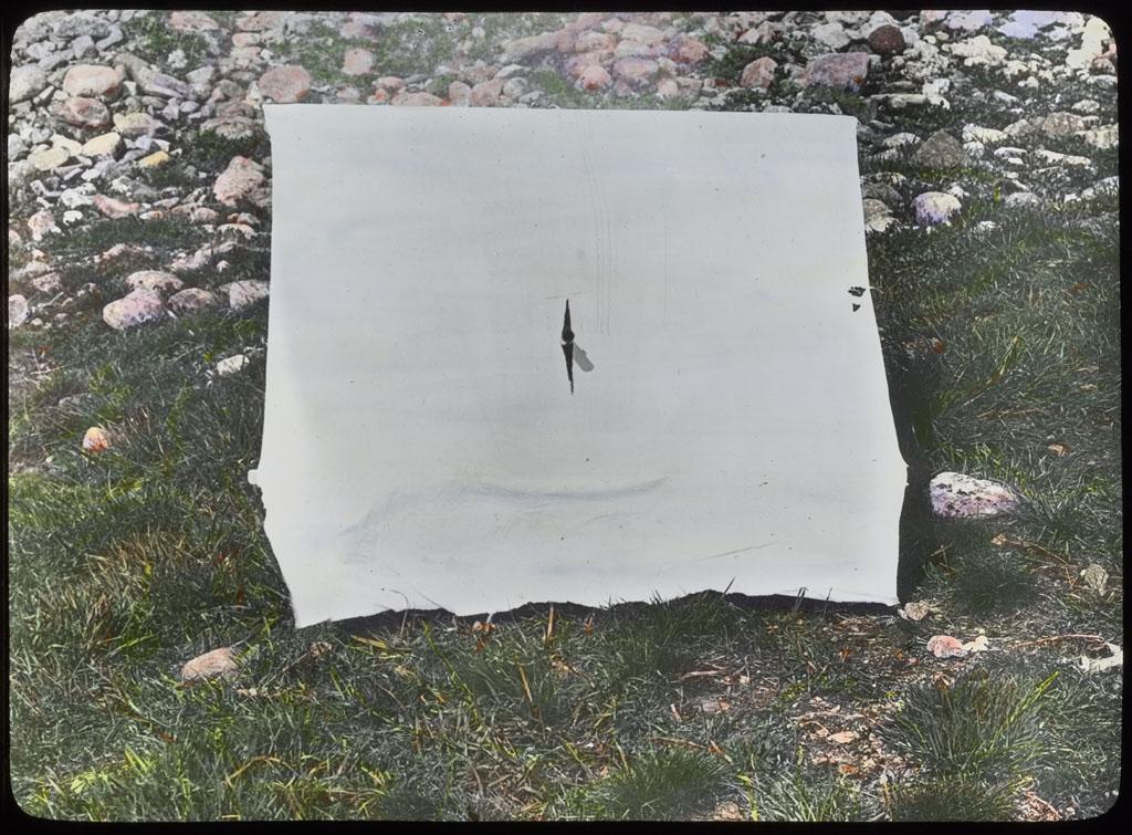 Donald Baxter MacMillan; Komataho; 1913-1917; image; silver gelatin on glass; 10.16 cm x 8.26 cm x 0.64 cm (4 in. x 3 1/4 in. x 1/4 in.); TGM; North America