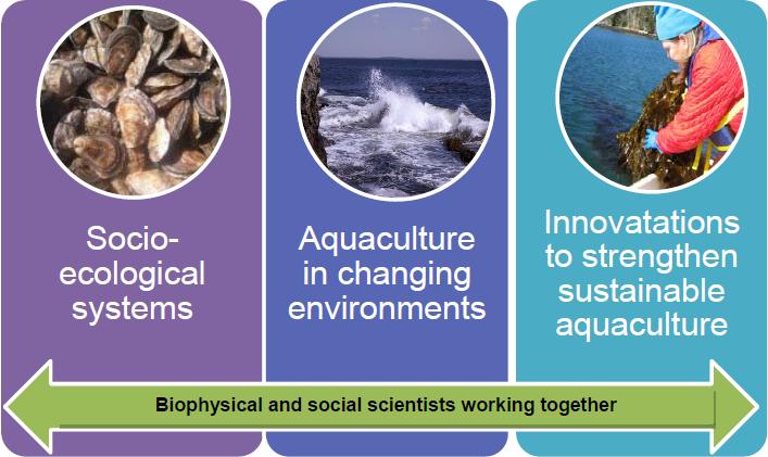 aquaculture ad
