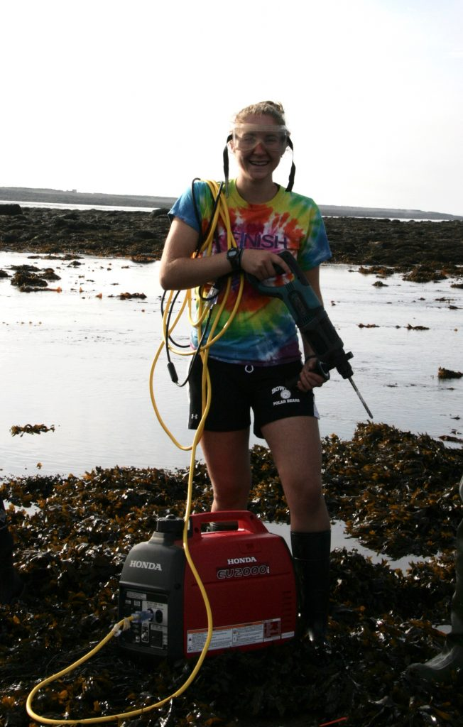 setting up intertidal temperature data loggers